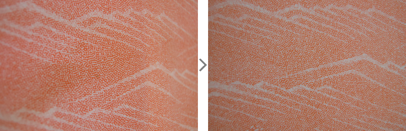小紋変色ビフォア